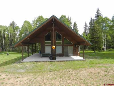 Montrose Single Family Home For Sale: 2407 Sawdust Pile Road