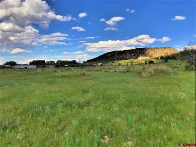 South Fork Residential Lots & Land For Sale: Hwy 160