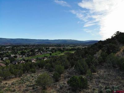 Cedaredge Residential Lots & Land For Sale: Cedar Mesa Road