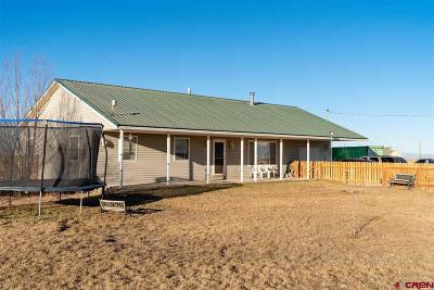 Alamosa Single Family Home For Sale: 7269 Sunrise Boulevard