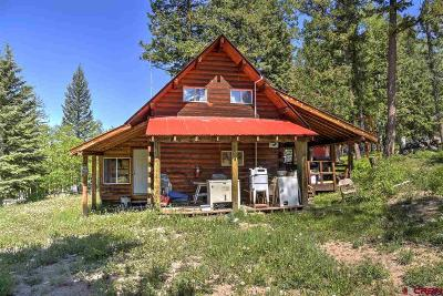 Mancos Single Family Home For Sale: 19700 Road 42