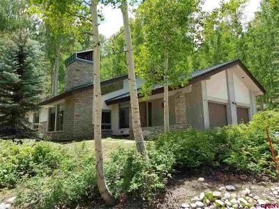 La Plata County Single Family Home For Sale: 85 Winterhawk Drive
