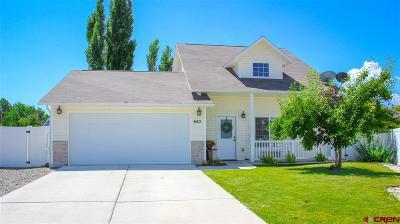 Delta Single Family Home UC/Contingent/Call LB: 640 Hawk Court