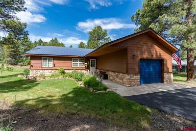 Pagosa Springs Single Family Home UC/Contingent/Call LB: 289 Masters Circle