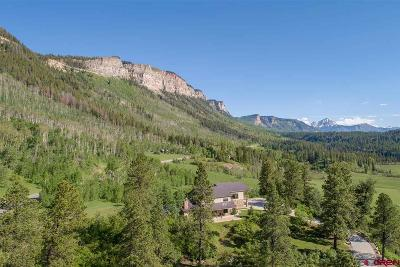 La Plata County Single Family Home For Sale: 43298 N Hwy 550