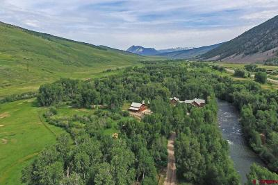 Gunnison County Single Family Home For Sale: 193 Larkspur Lane