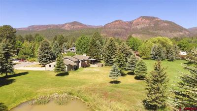 Durango Single Family Home For Sale: 324 Cottonwood Creek Road