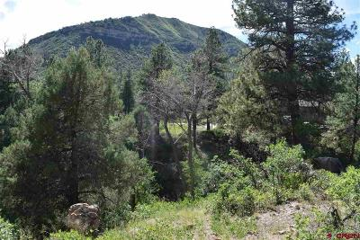Durango Residential Lots & Land For Sale: 48 Yucca Court