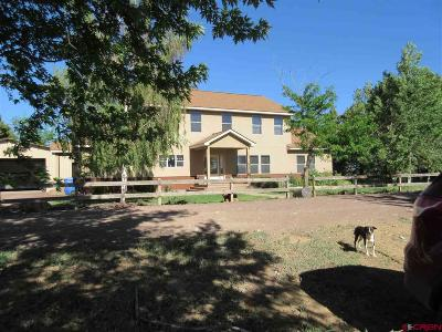 Pleasant View Single Family Home For Sale: 9590 Road Cc