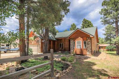Pagosa Springs Single Family Home UC/Contingent/Call LB: 603 Oakwood Circle