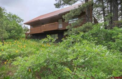 Pagosa Springs Single Family Home For Sale: 204 Swiss Village Drive