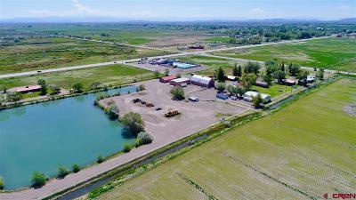 Alamosa Farm For Sale: 5895 State Hwy 17
