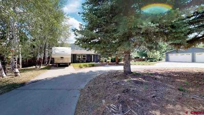 Durango Single Family Home For Sale: 84 Navajo Lane