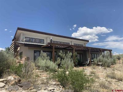 Hotchkiss, Crawford, Paonia Single Family Home For Sale: 28478 Highway 92