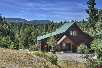 La Plata County Single Family Home For Sale: 301 Gulch Road