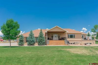 Montrose Single Family Home UC/Contingent/Call LB: 20866 Trophy Road