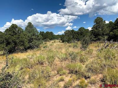 Dolores Residential Lots & Land For Sale: Road W