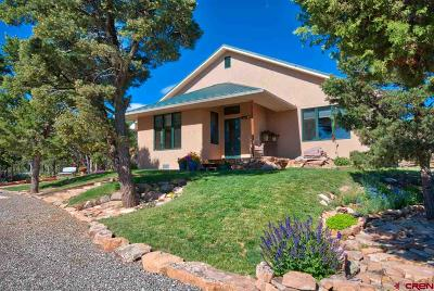 Montrose CO Single Family Home For Sale: $1,350,000