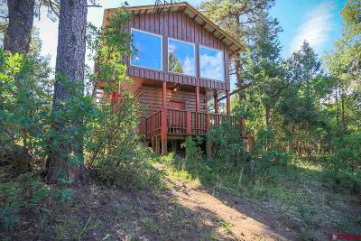 Pagosa Springs Single Family Home For Sale: 134 Maple Glen Place