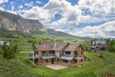 Gunnison County Single Family Home For Sale: 45 W Silver Sage Drive