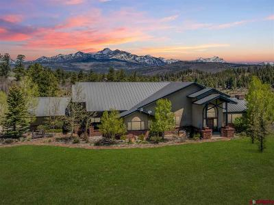 Pagosa Springs Single Family Home For Sale: 135 Santino Place