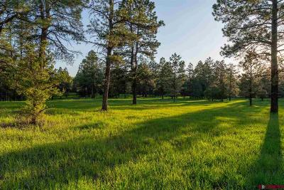 Mancos Residential Lots & Land For Sale: Road 36.5