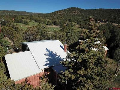 South Fork CO Single Family Home For Sale: $129,000