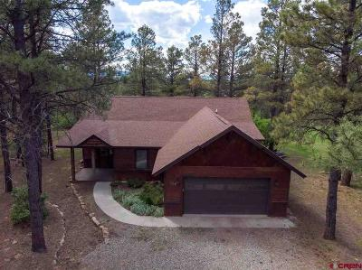 Pagosa Springs Single Family Home UC/Contingent/Call LB: 177 Dutton