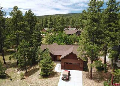 Durango Single Family Home For Sale: 56 Window Lake Trail