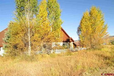 Gunnison County Single Family Home For Sale: 101 E Silver Sage Drive