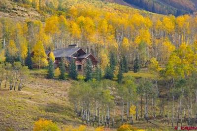 Telluride Single Family Home For Sale: 328 Basque Boulevard