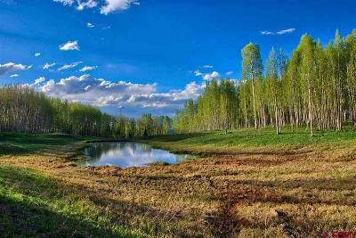 Montrose CO Residential Lots & Land For Sale: $148,000