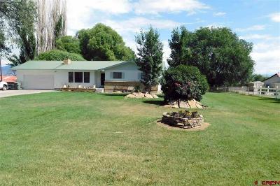Delta Single Family Home UC/Contingent/Call LB: 1767 G Road