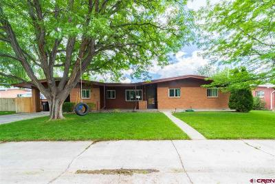 Montrose Single Family Home For Sale: 4 Aspen Street