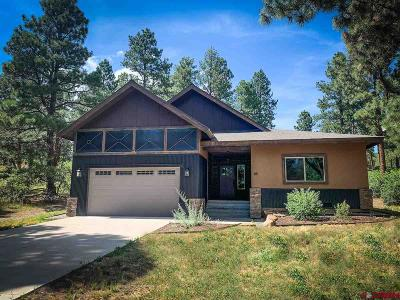 Durango Single Family Home For Sale: 85 Clear Creek Loop