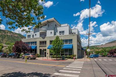 La Plata County Condo/Townhouse For Sale: 679 2nd Avenue #F