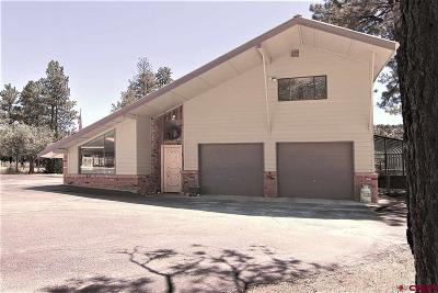 Durango Single Family Home For Sale: 1177 Long Hollow Circle