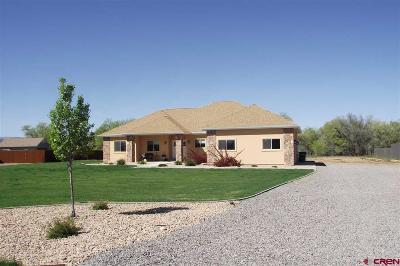 Montrose CO Single Family Home For Sale: $459,950