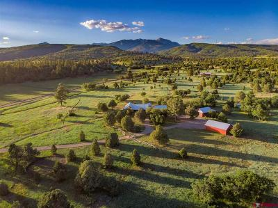 La Plata County Farm For Sale: 720 Cross Creek