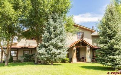 Hotchkiss, Crawford, Paonia Single Family Home For Sale: 3451 Stearman Lane