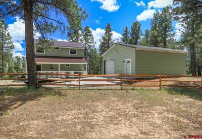 Pagosa Springs Single Family Home For Sale: 472 Monument Avenue