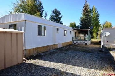 Almont Mobile/Manufactured For Sale: 130 County Road 742 #UNIT 20