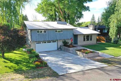Montrose Single Family Home UC/Contingent/Call LB: 66192 Cottonwood Drive