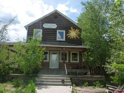 Ridgway Single Family Home For Sale: 155 S Elizabeth Street
