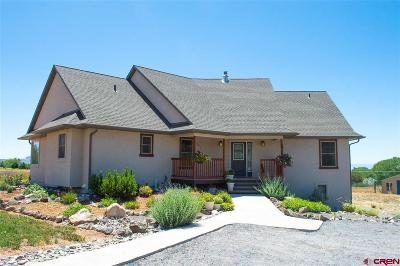 Hotchkiss, Crawford, Paonia Single Family Home For Sale: 29767 Stingley Gulch Road