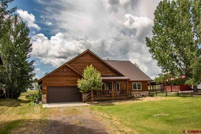 Pagosa Springs Single Family Home UC/Contingent/Call LB: 240 Lakeside Drive