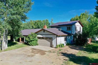 Gunnison River Single Family Home For Sale: 109 Arapahoe Road