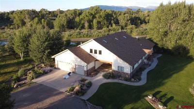 Monte Vista Single Family Home For Sale: 300 North Farm Rd