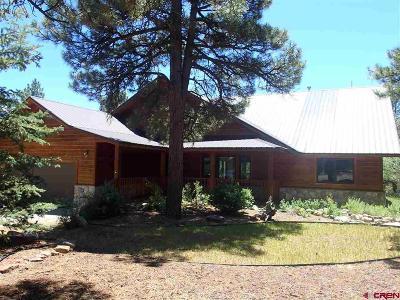 Archuleta County Single Family Home For Sale: 206 Stevens Circle