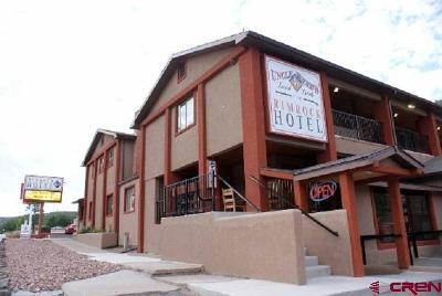 Commercial For Sale: 123 E Main Street